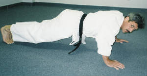 theperfectpushup1.jpg