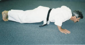 theperfectpushup2.jpg